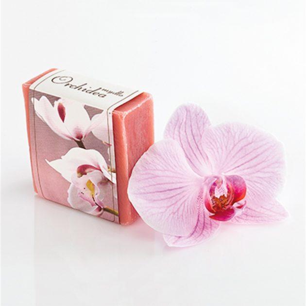 orchidea[1]